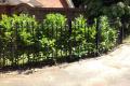 A metal gated railing amongst shrubbery